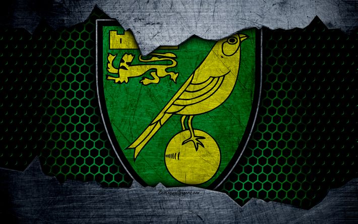 Best 25+ Norwich City Fc Ideas On Pinterest