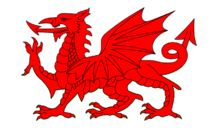 """The Welsh Dragon – Welsh: Y Ddraig Goch (""""the red dragon"""") pronounced [ə ˈðraiɡ ˈɡoːχ] – appears on the national flag of Wales. The flag is ..."""