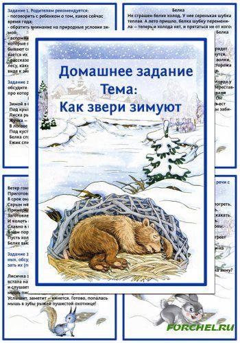 Картотека домашних заданий - Как звери зимуют