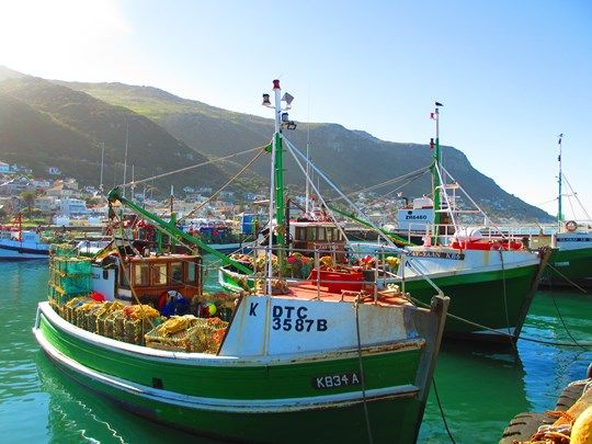 Spend a day in Kalk Bay, Cape Town - plenty of activities and attractions to see for all ages!