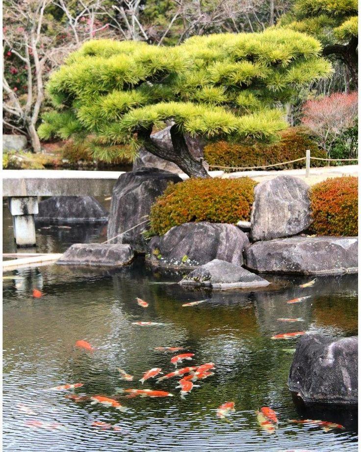 #visitjapan #japantravelau #japaninstagram #instajapan #ilovejapan #visitjapanau #instagramjapan #japantrip #japan_of_insta #japan2018 #traveljapan #koi #koifish #japanesegarden #himeji #kokoen #kokoengarden