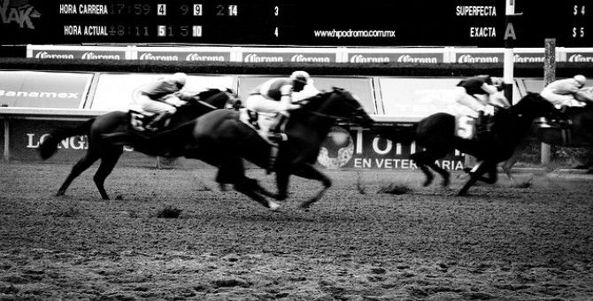 Horse Racing Tips...