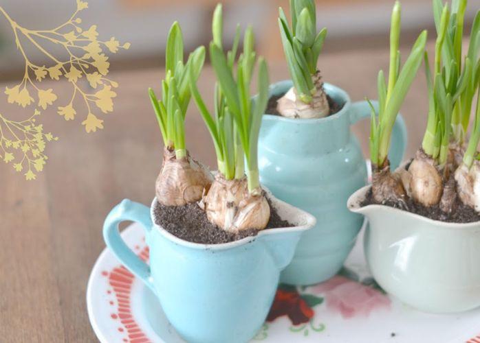 ... decoration-table-printemps/ #decoration #printemps #fleurs #printemps