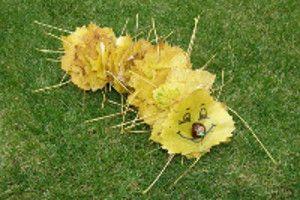 Listová húsenička
