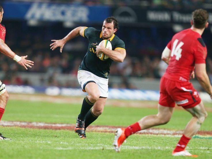 Tough to bring down: Bismarck du Plessis