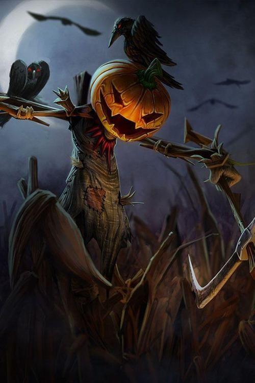 scarecrow halloween halloween pictures happy halloween halloween images scarecrow jack o lantern - Halloween Scare Crow