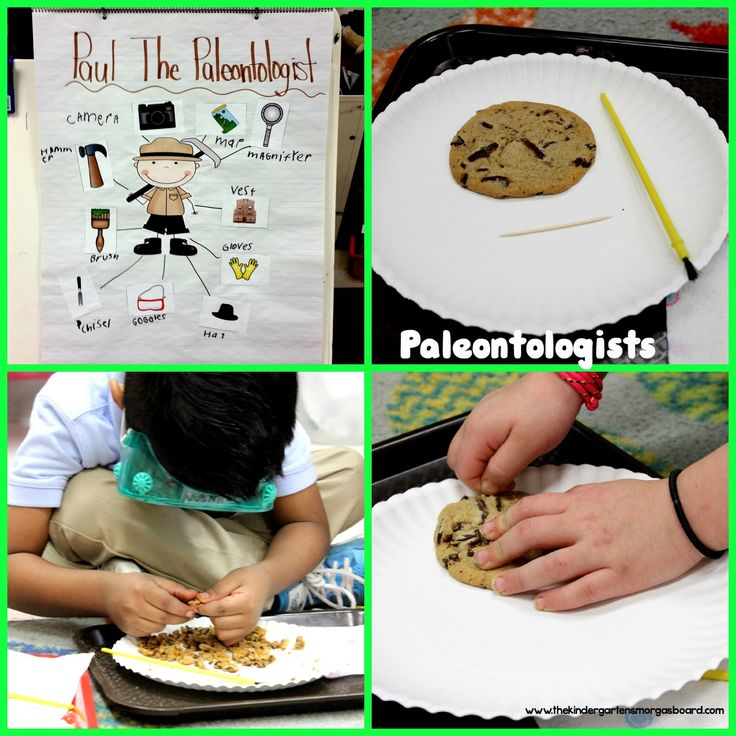 Students become paleontologists.  Dig for fossils.  Learn about tools used by paleontologists.  Kindergarten paleontologists!
