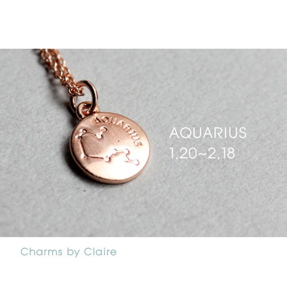 Hey, I found this really awesome Etsy listing at https://www.etsy.com/listing/450234142/aquarius-zodiac-disc-charms-rose-gold