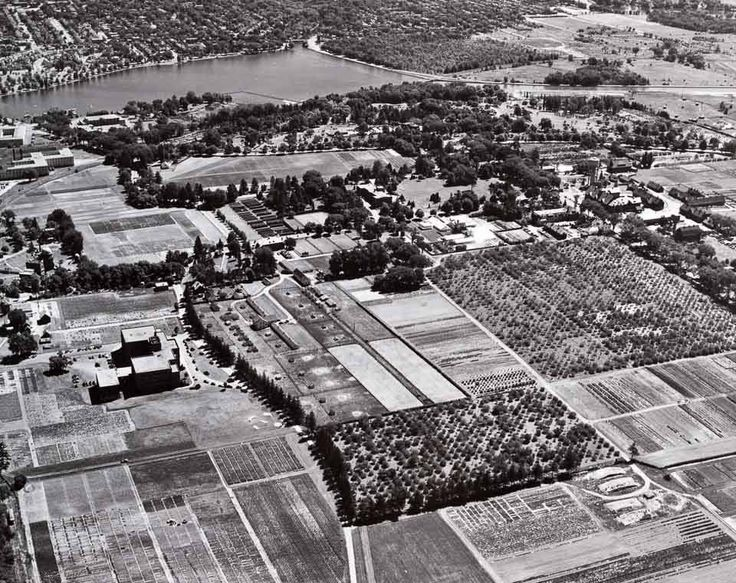 Ottawa from the Air ... Came across another nifty aerial looking across the Experimental Farm towards Dow's Lake, this time from July of 1949.  What caught my eye was the forest along the south side of Dow's Lake (top centre), and the fact that Bronson was hardly more than a country road once it crossed the canal.