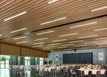 Timber Baffle Ceiling Google Search Ceilings