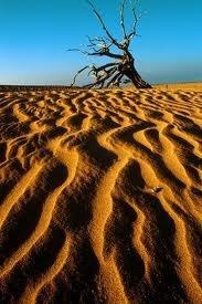 Desierto de la Guajira. Colombia