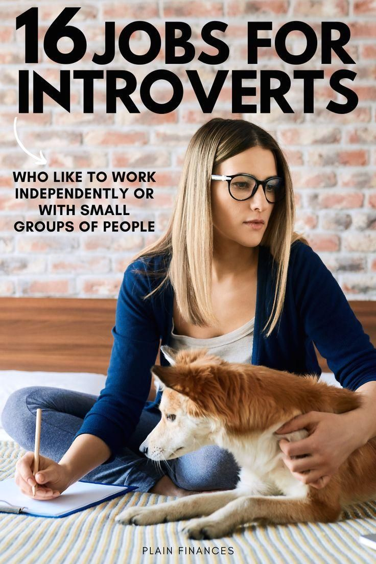 Best Jobs for Introverts Who Like to Work Independently or