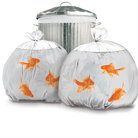 Eğlenceli Objeler - Çöp Torbası Akvaryum Balığı