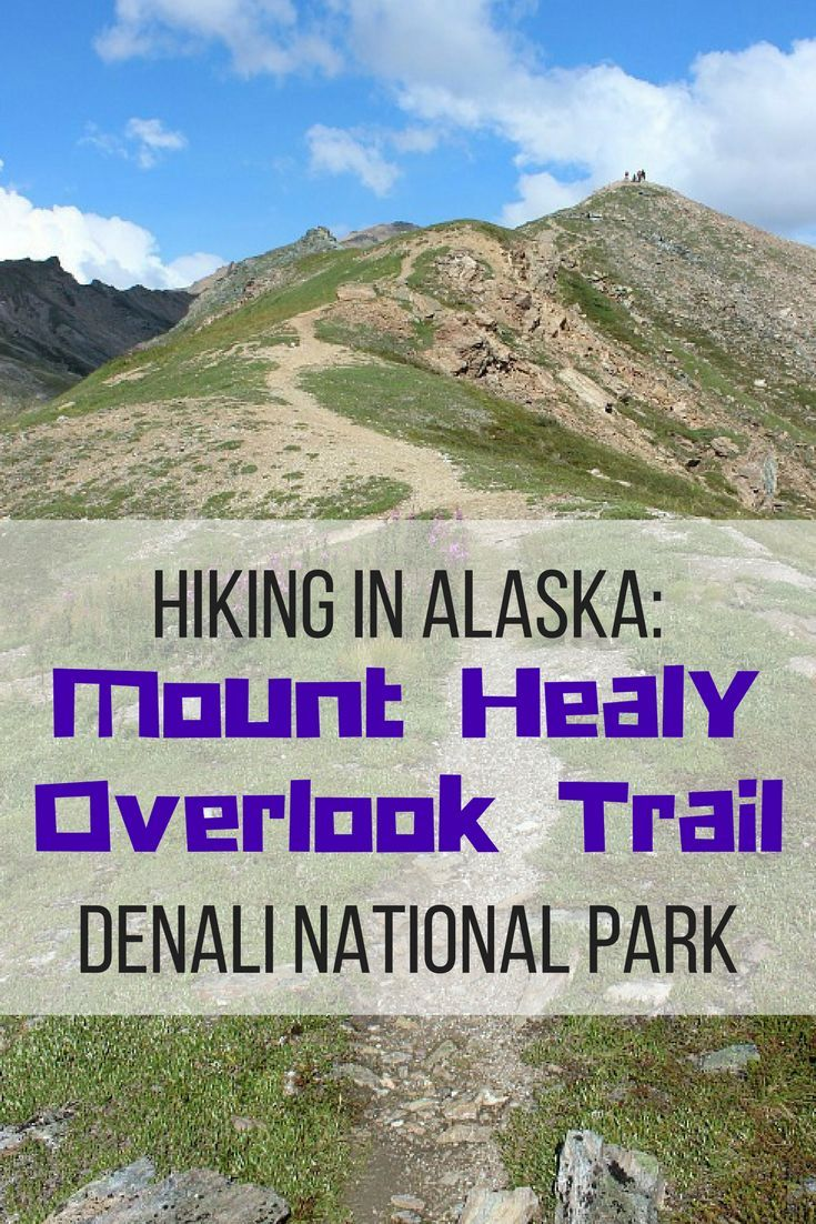 Hiking in Alaska: The Mount Healy Overlook Trail in Denali National Park. The perfect hike for outstanding views, lots of cute critter spotting, a bit of challenge and more wild blueberries than you can eat, the Mount Healy Overlook trail in the entrance area of Denali National Park is definitely worth the hike | The World on my Necklace