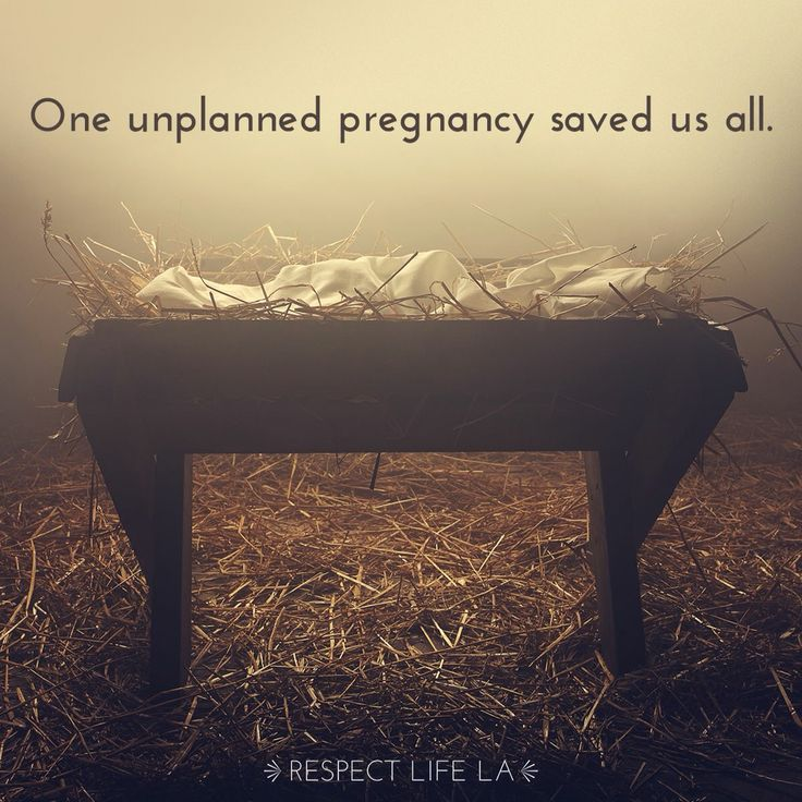 The unplanned pregnancy that saved the world