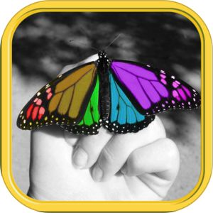 Color Editor - Photo Recolor & Background Eraser by Zhang liming