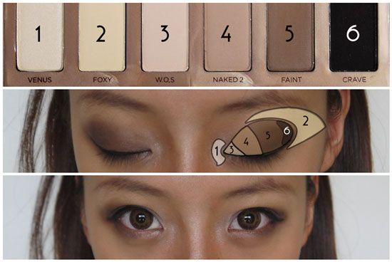 How To Contour and Sculpt Your Features With Urban Decay's Naked Flushed and Basics Palette | tongue in chic