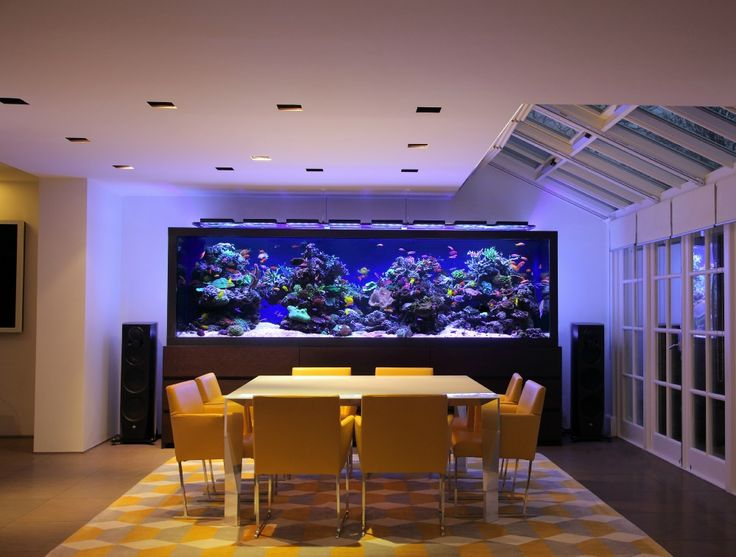 Luxury Aquarium Design   Creates An Unique Focal Point At This Exquisite  Home Part 37