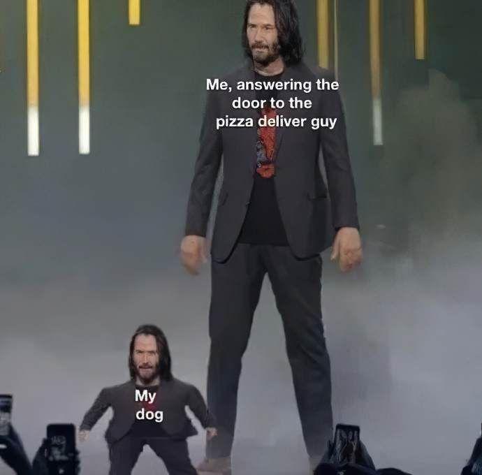 Most Hilarious Mini Keanu Reeves Memes Short Keanu Jokes Funny Memes Keanu Reeves Meme Funny Video Memes