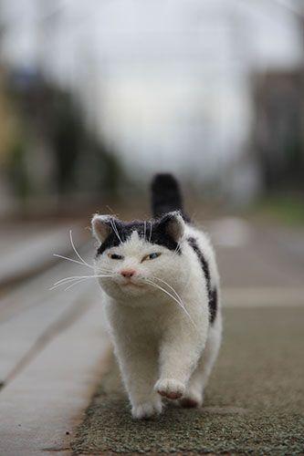 Cute kitten felted... strolling...! By ..... artist?? ♥•♥•♥