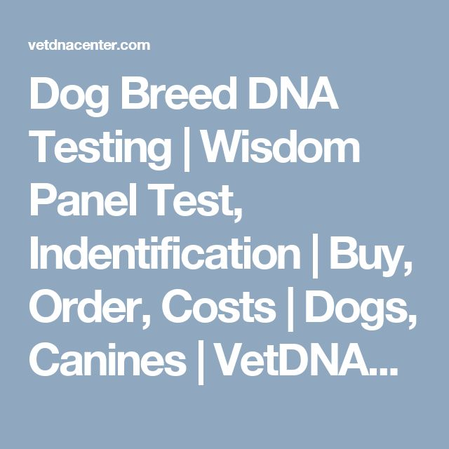 Dog Breed DNA Testing | Wisdom Panel Test, Indentification | Buy, Order, Costs | Dogs, Canines | VetDNACenter.com