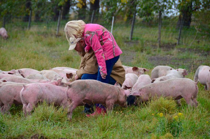 Why We Love Our Free-Range Pork (& You Should Too!) #yyc #yyceats #properpork #spraggsmeatshop