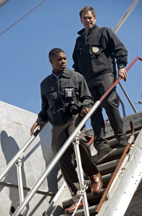 25+ best ideas about Becoming a cop on Pinterest | Dispatcher ...