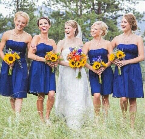 Damas azul marino
