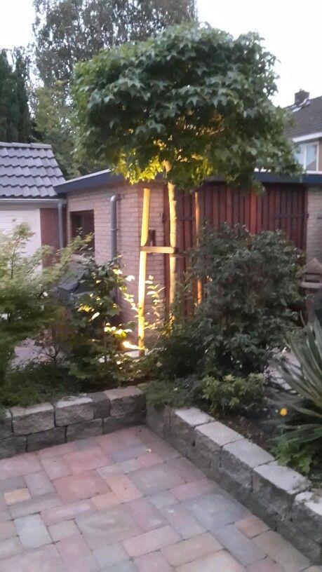 Tuin verlichting gaat aan bij schemering. Dit is het beste verjaardagscadeau ever.