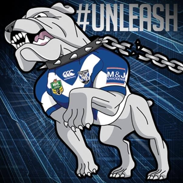 unleash, doggies