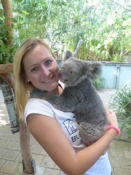 Work and Travel Australien: Traumjob Wildlife Ranger auf der Insel Magnetic Island  #workandtravel #reisenundarbeiten