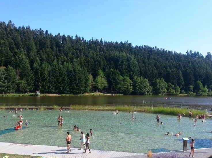 baignade écologique piscine naturelle lac des sapins cublize