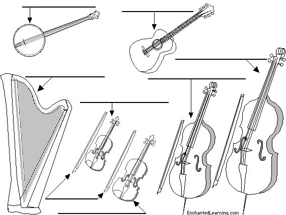 Label string instruments in English