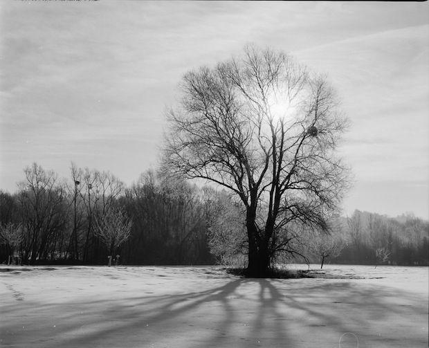 Wintersonnenwende - ECHT HÜBSCH