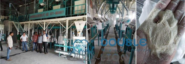 Double lion dedicated in flour mill lines and flour mills design & manufacturing, including flour cleaning machine, flour milling machine, flour packing machine, etc.