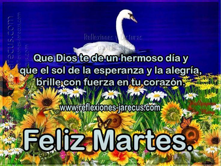 Que Dios te de un hermoso día y que el sol de la esperanza y la alegría, brille con fuerza en tu corazón  Feliz martes