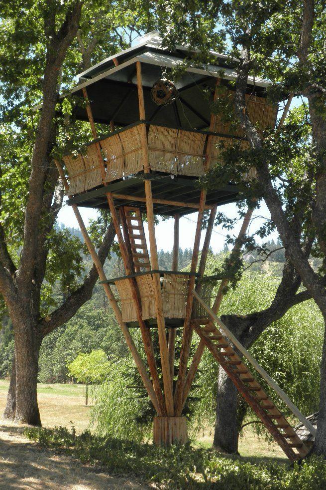 O Globo - Dez incríveis casas na árvore disponíveis para aluguel