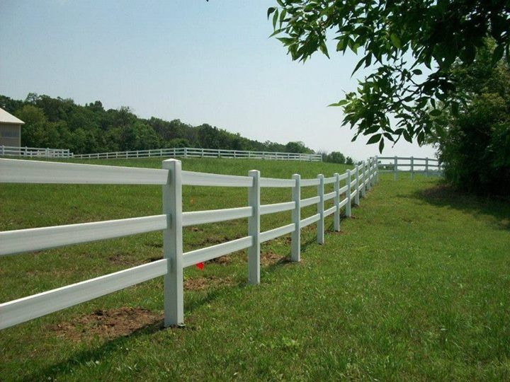 Image result for horse show derby fence