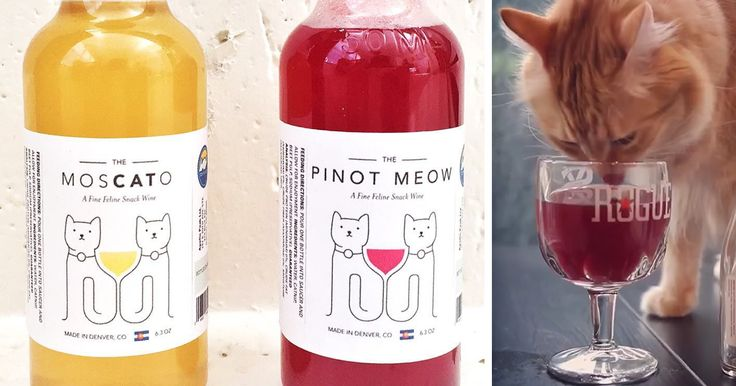 This Catnip Wine Lets Your Cat Be Your New Drinking Buddie | Bored Panda
