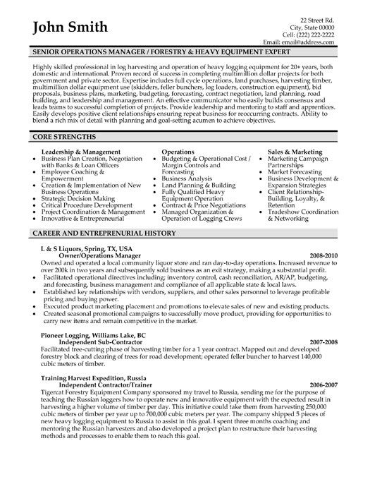 Sample Resume For Director Of Operations  Template
