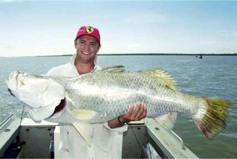 #Barramundi #Caravan #Park #Cabins #Hotels #Fishing #Fish #Tour #Accommodation #Birds #Kangaroo #Sunset #Pelicans #BigFish Take your caravan to Karumba, Qld, and you'll find there's more to it than mere barra and prawns goo.gl/ZwwdTg