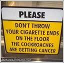 and to all you that smoke, good luck. i've held a lung of a smoker. even without cancer it's a rock.