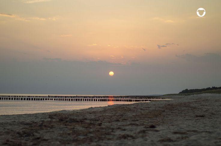 Sonnenaufgang auf dem Darß - Hundeurlaub an der Ostsee ⚓   ©Melody M. Bayer www.buddyandme.de   #PinscherBuddy