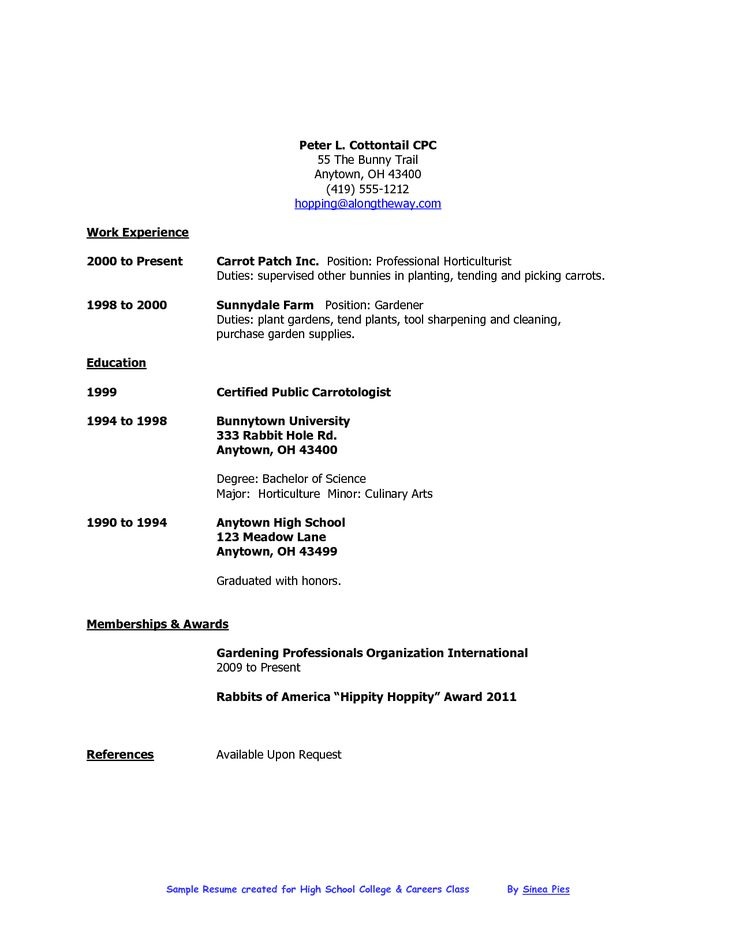 resume templates limited work experience  resume