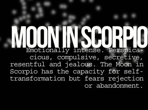 Moon in Scorpio // Astrology
