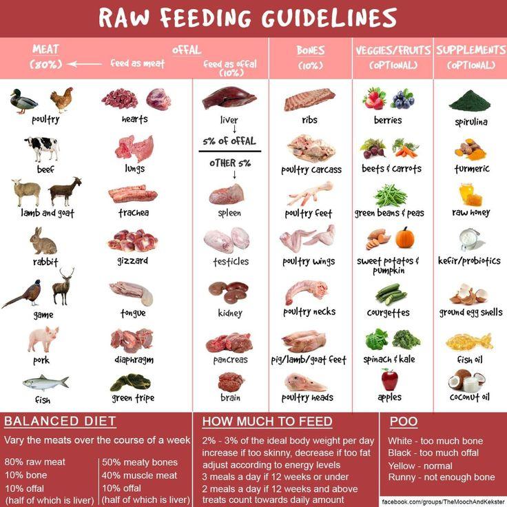 barf diet chart Google Search Raw dog food diet