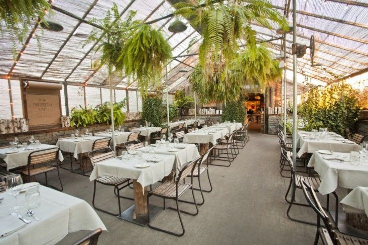 1000 Images About Greenhouse Reno On Pinterest Gardens