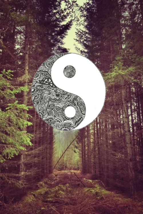 Nature Forest Art Photography Ying Yang Wallpaper