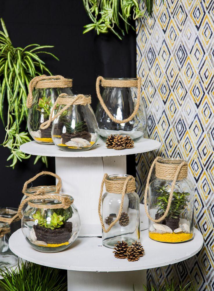 Avec leur cordage, ces contenants en verre transparent feront de très beaux terrariums ou bougeoirs. #GRDFloral #fleuriste #plantes #deco