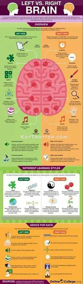 Left vs. Right Brain c/o Dr. Kay Trotter